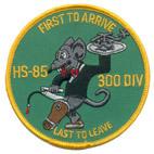 HS 85 300 DIV